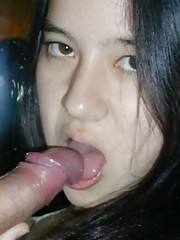 Picture collection of amateur horny naughty cocksucking bitches